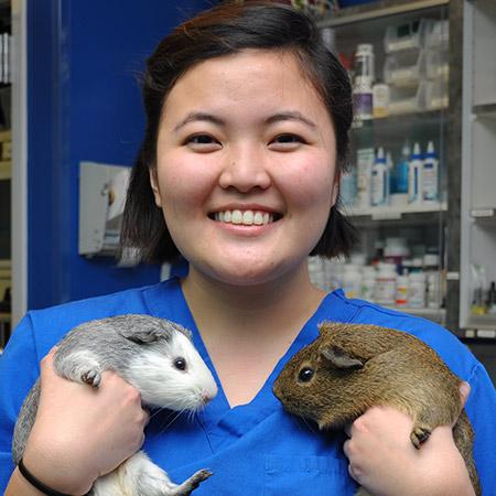 Maryland Avian & Exotics Veterinary Care